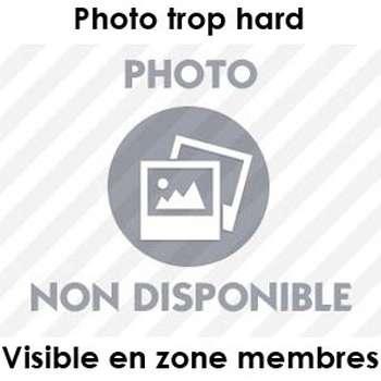 Aventure sans lendemain à Pierrefitte-sur-Seine