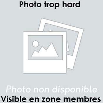 Note mon 06 pour un plan baise à Saint-Maur-des-Fossés