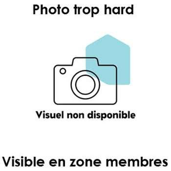 Je recherche un métis bien musclé sur Tremblay-en-France pour un pqr